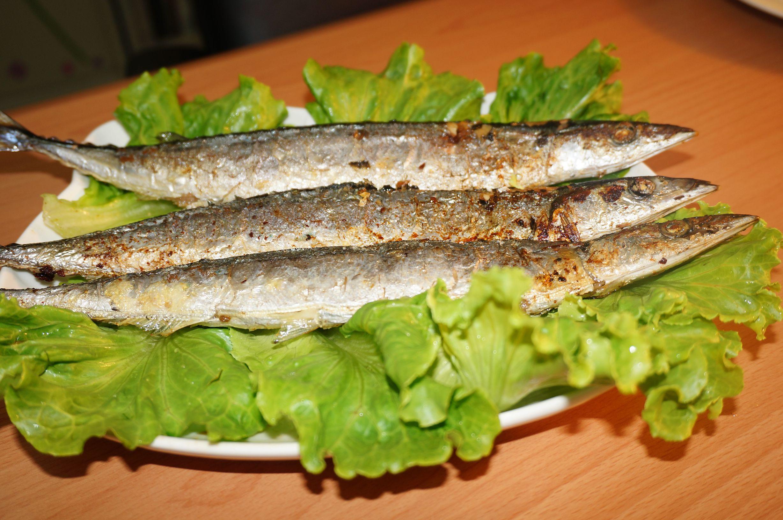 肥美秋刀魚